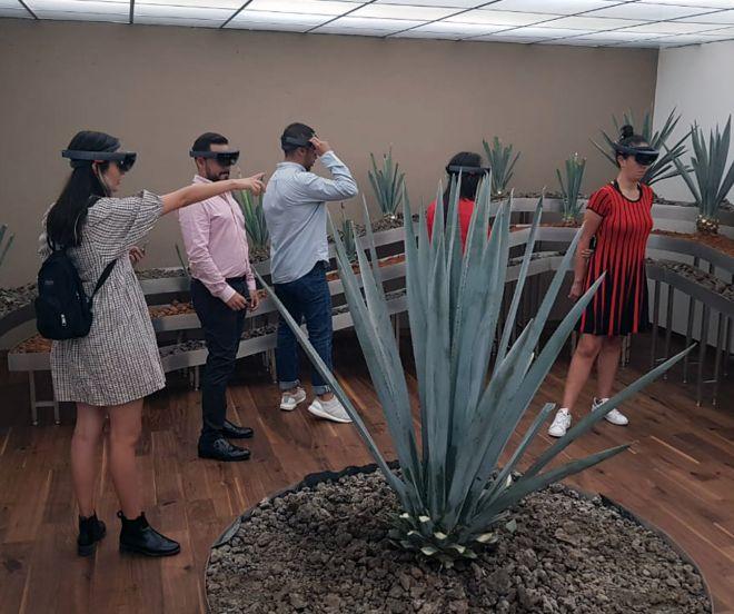 Virtualware_Museo_Tierra_Maestros_Mexico_1_1292x1080
